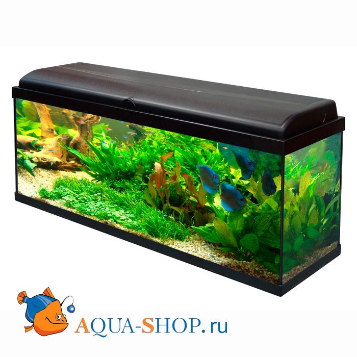 Аквариум aquatlantis
