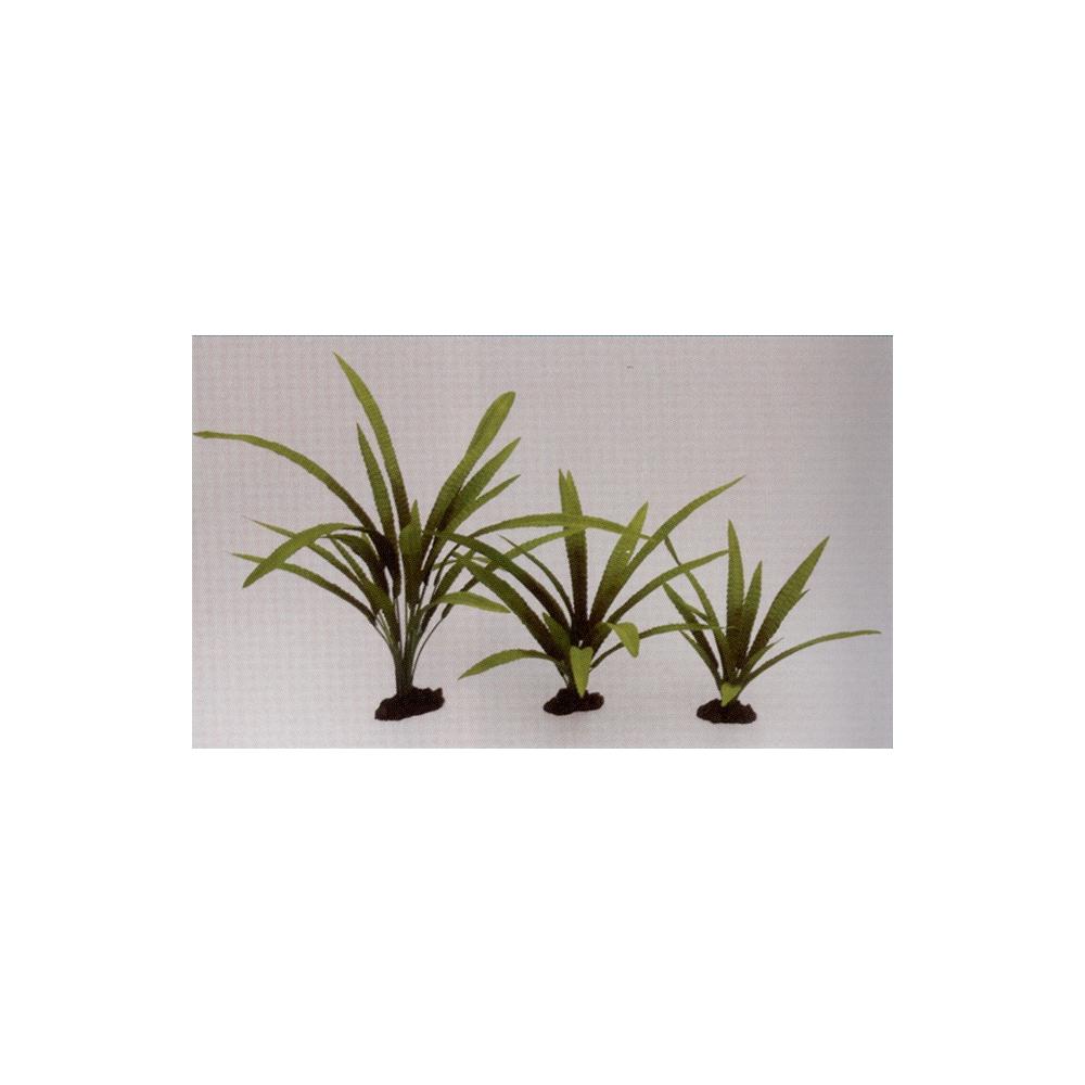 Растение шелковое Криптокорина Балансе 13см