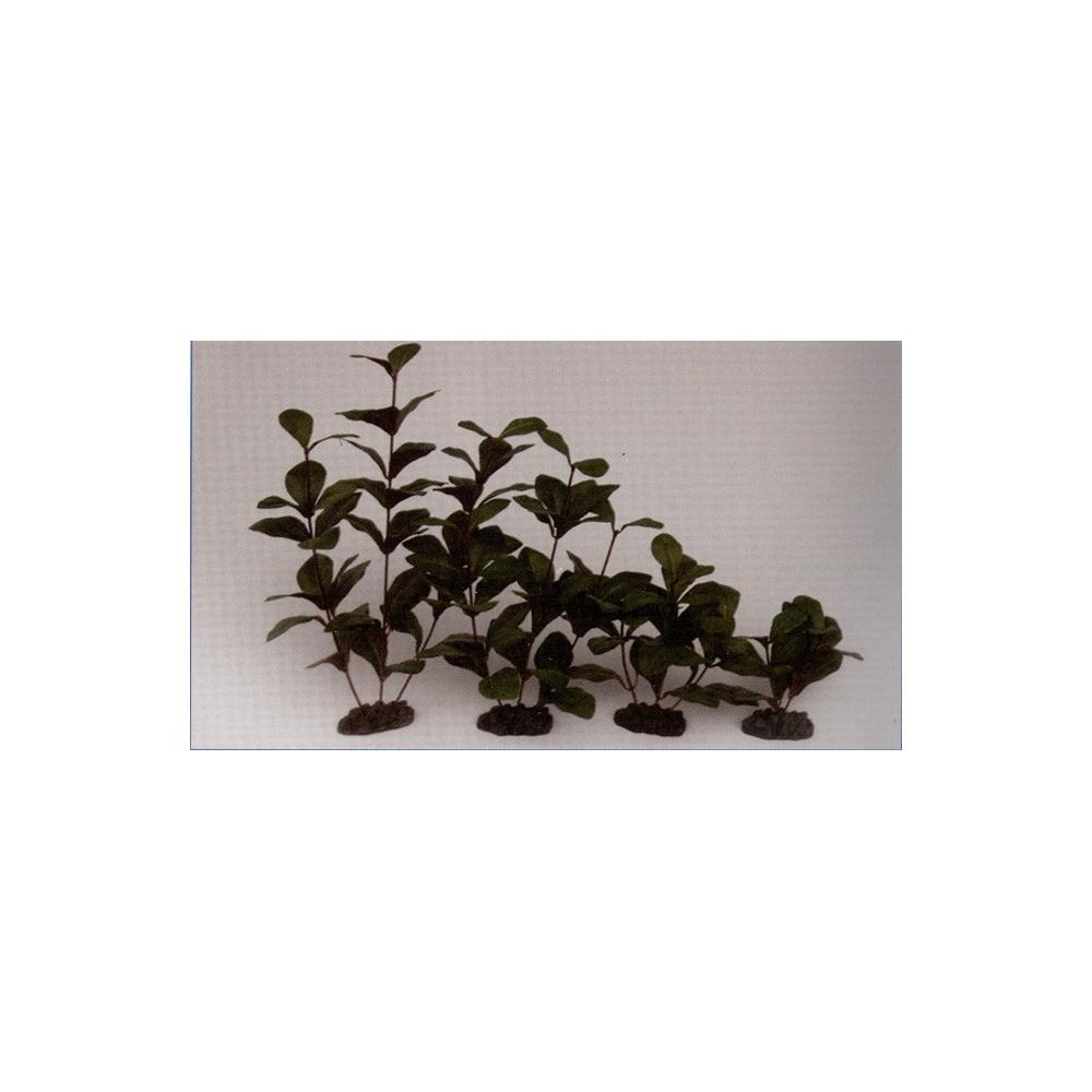 Растение шелковое Гигрофила 13см