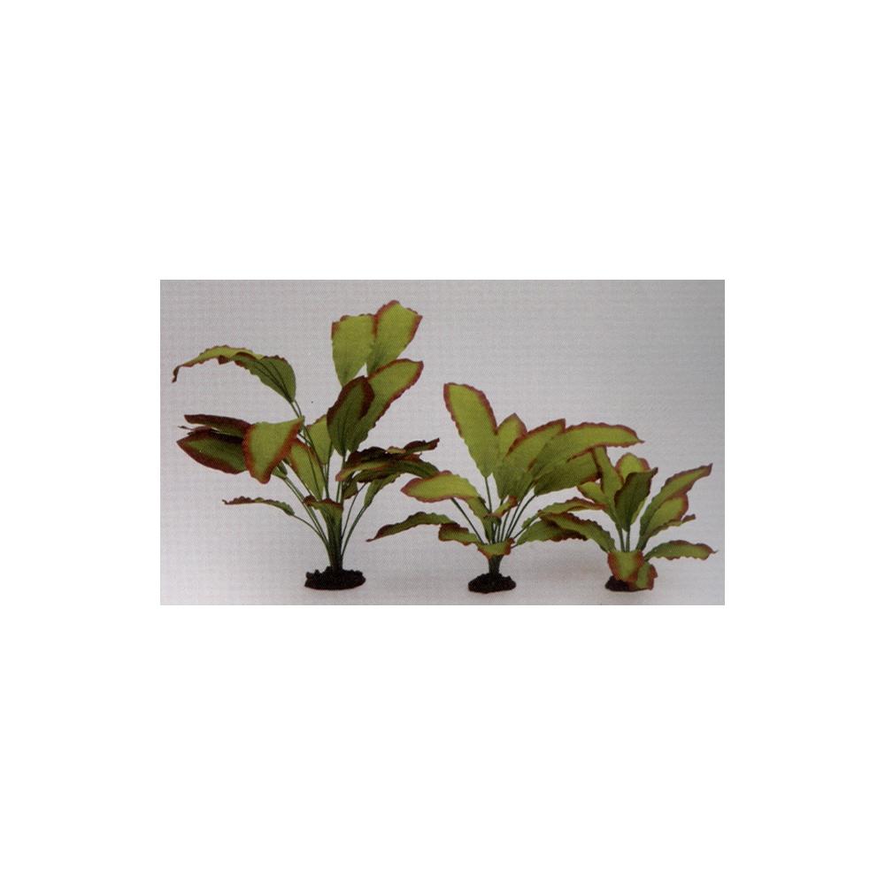 Растение шелковое Эхинодорус Озирис 13см