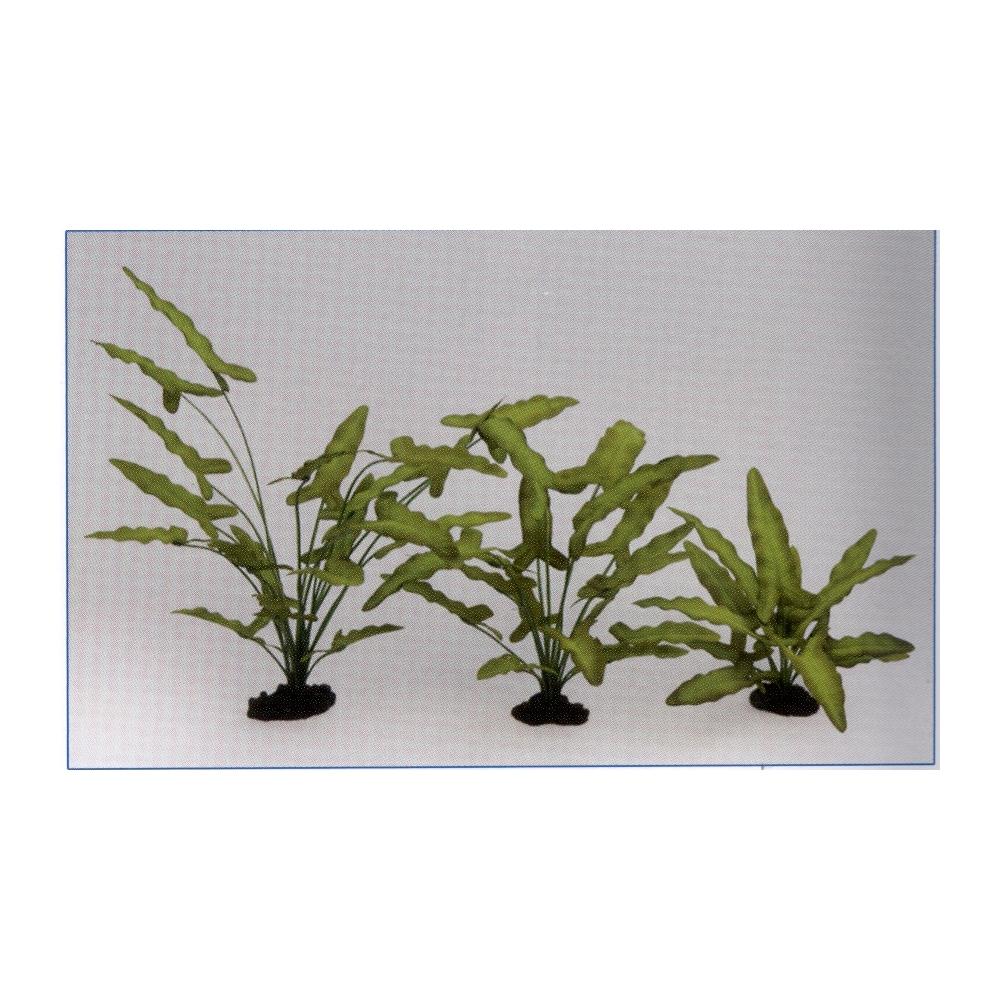 Растение шелковое Анубиас Хастифолия 40см