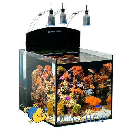 """Аквариум Aqua Medic нанориф """"Blenny"""" 80 л 40*50*40"""