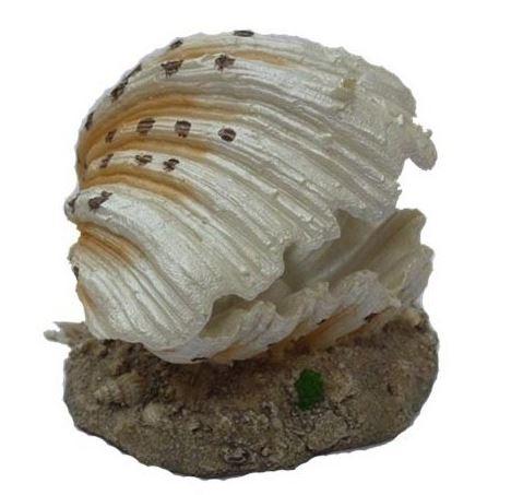 """Грот Meijing """"Морская раковина"""" (распылитель) 9*8*6"""