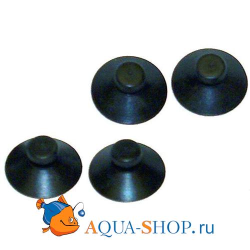 Присоски  Dennerle для реакторов купить в интернет-магазине AQUA-SHOP