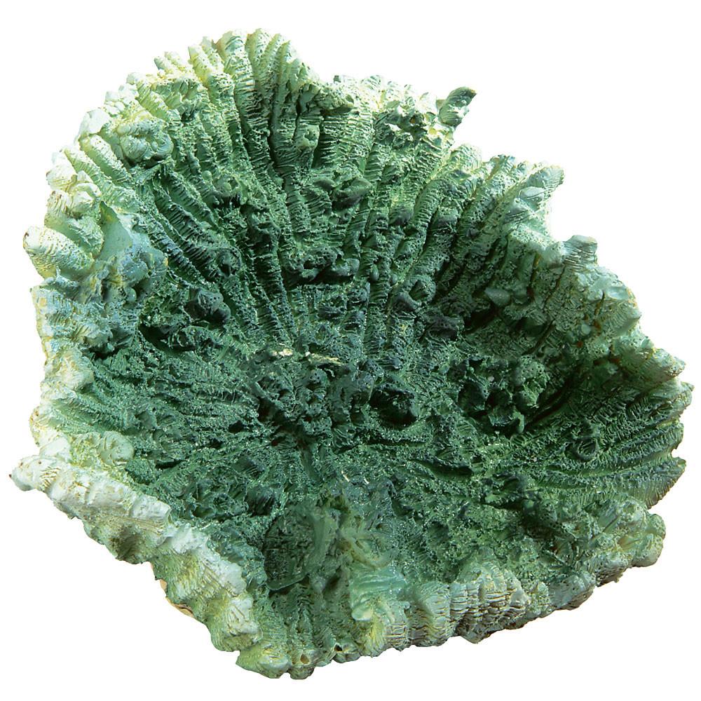 Коралл искусственный FERPLAST зеленый