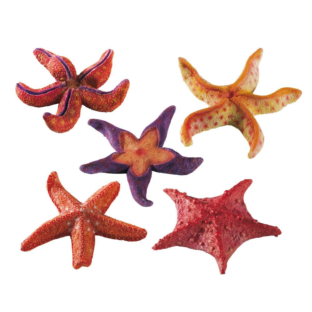 Звезда морская FERPLAST малая