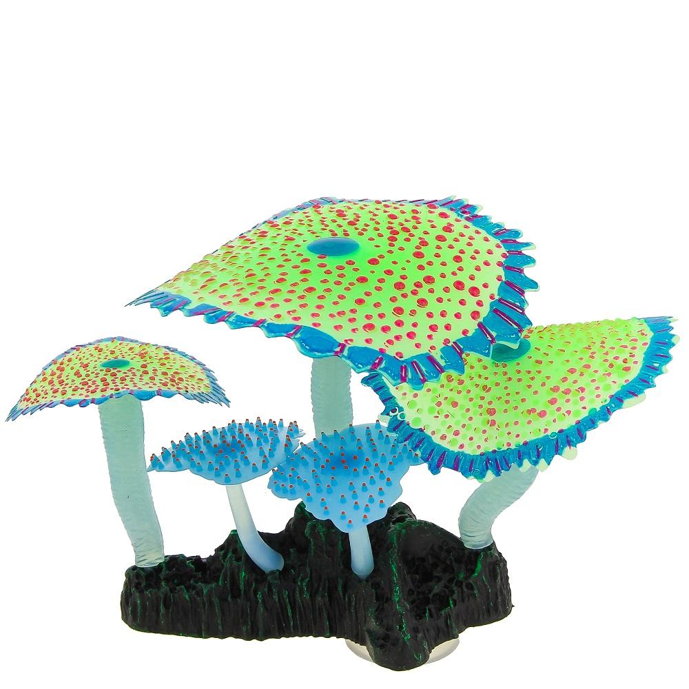 Кораллы зонтичные зеленые 14*6,5*12 см