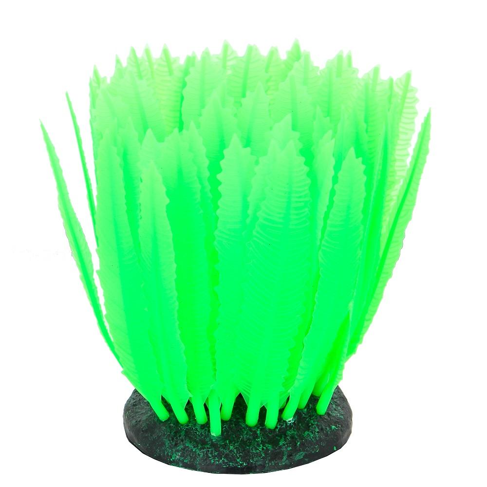 Морская лилия зеленая 10*7,5*11 см