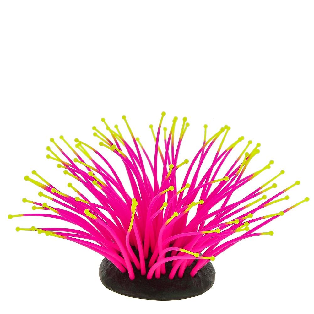 Морской анемон розовый GLO 9,5х8,5х9см