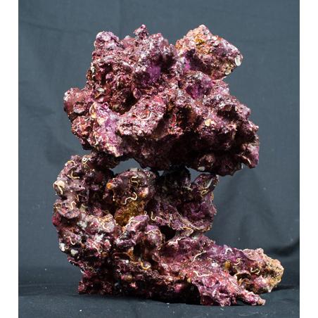Камни живые Real Reef Rock (кг.)