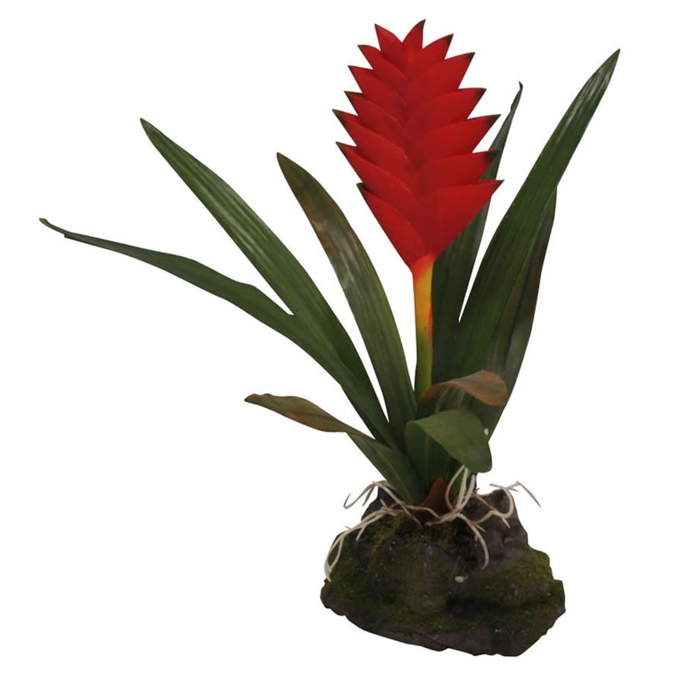 Растение для террариумов Lucky Reptile Бромелия Гузмания