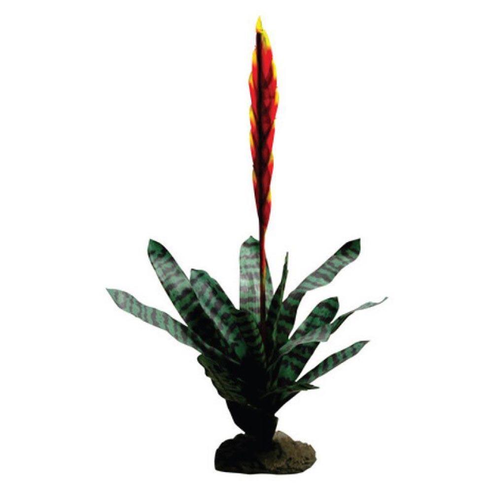 Растение для террариумов Lucky Reptile Бромелия Вриси