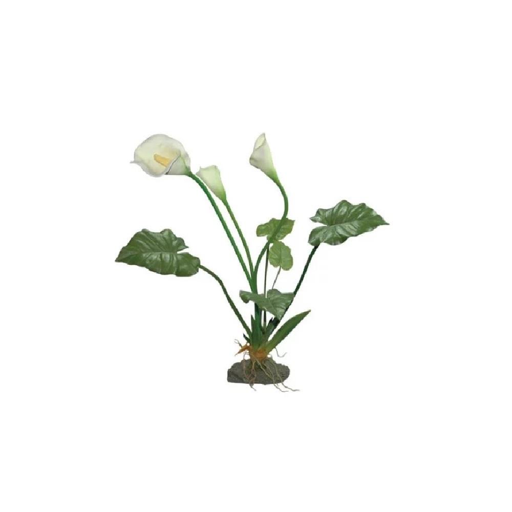 Растение для террариумов Lucky Reptile Калла Лилия белая