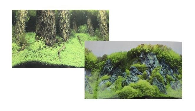 Фон для аквариума двухсторонний Затопленный лес/Камни с растениями 30х60см