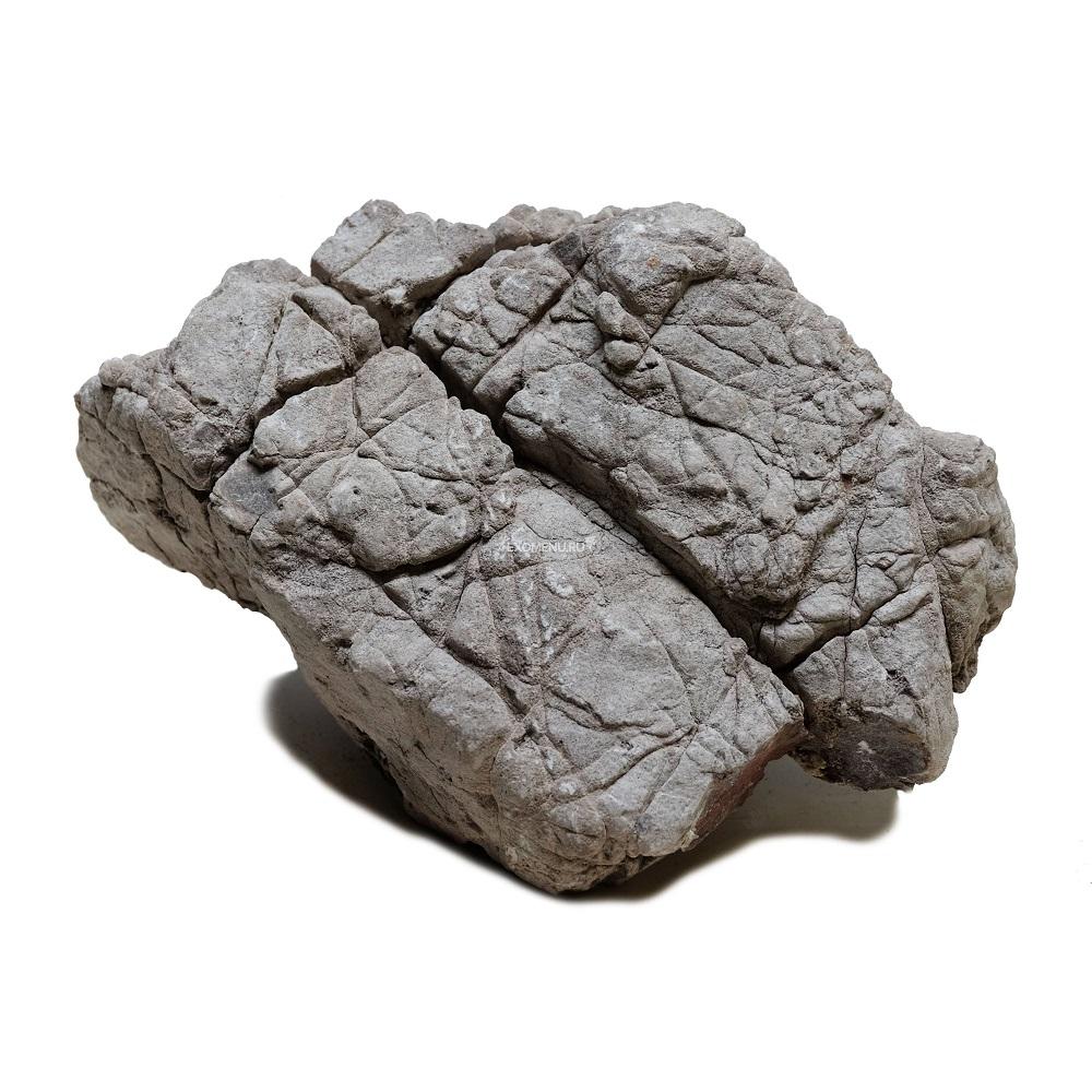 Декорация природная PRIME Камень серый Лао S 10-20см