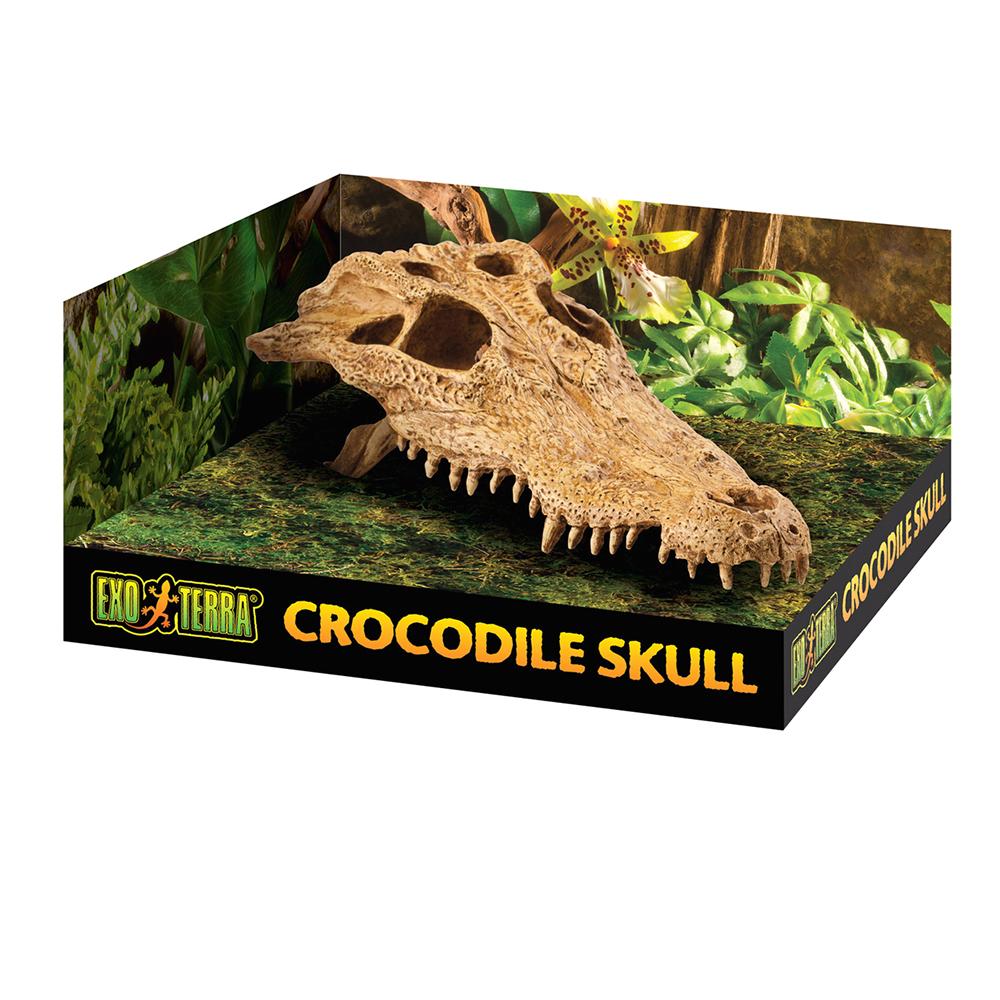 Декорация для террариумов Hagen EXO TERRA «Череп крокодила»