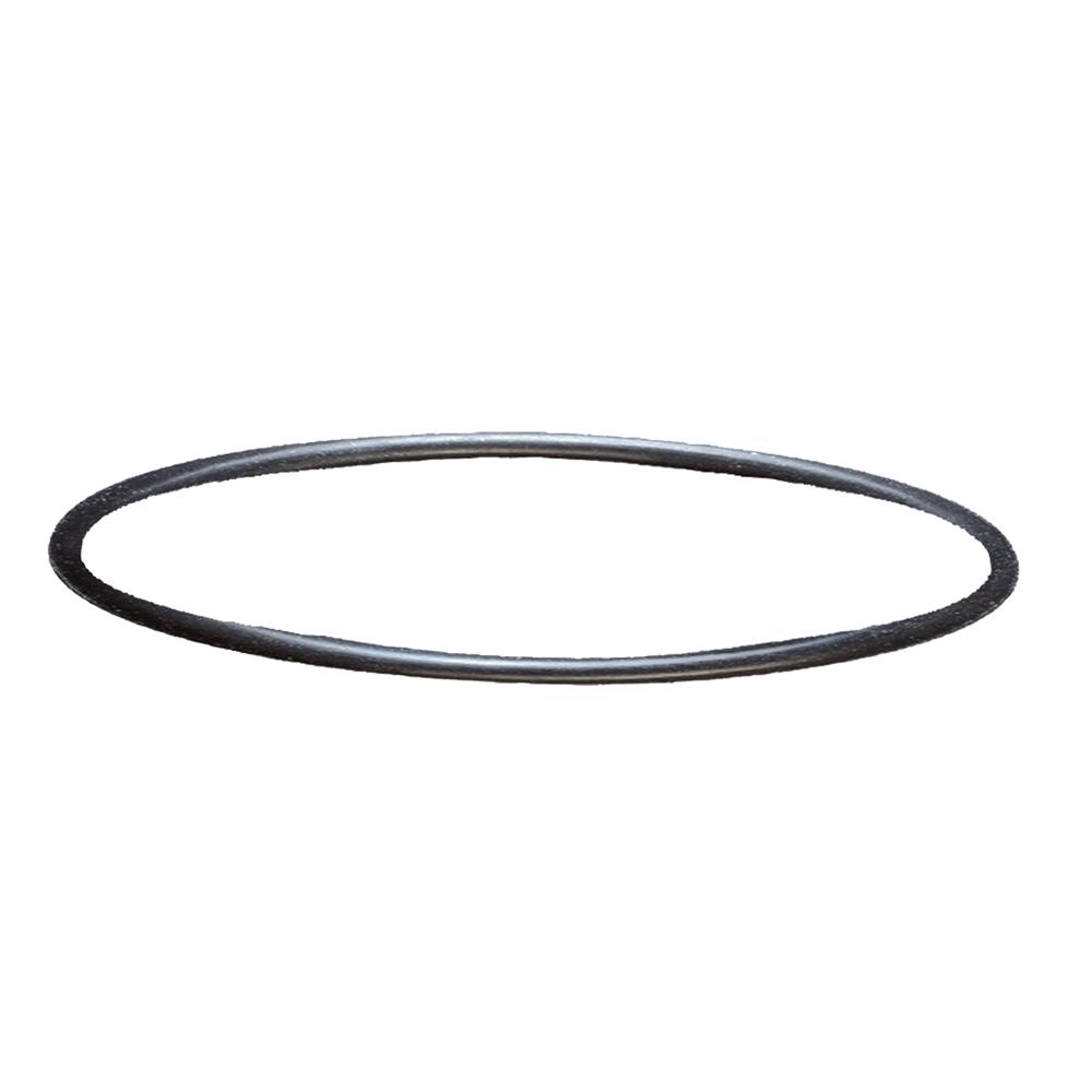 Кольцо уплотнительное SERA для фильтров Fil Bioactive 130/130+UV под голову