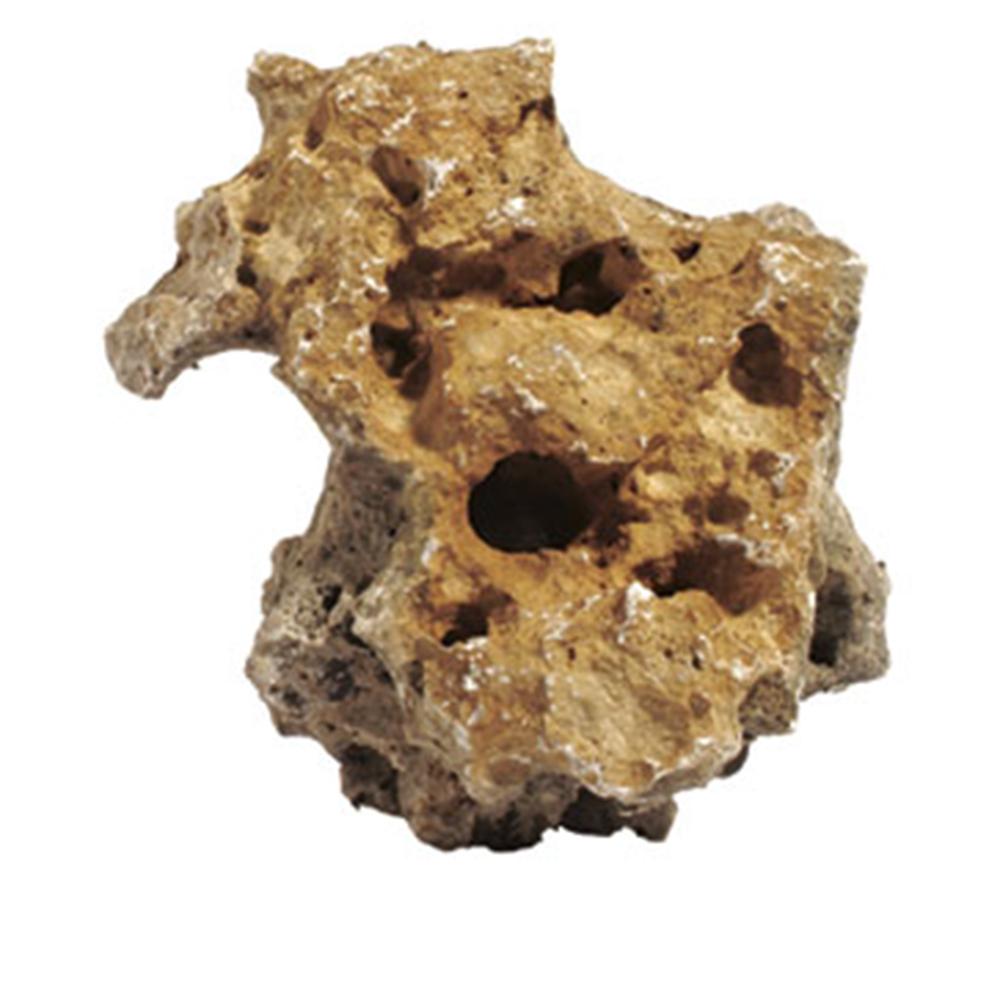 Камень Meyer дырчатый за кг