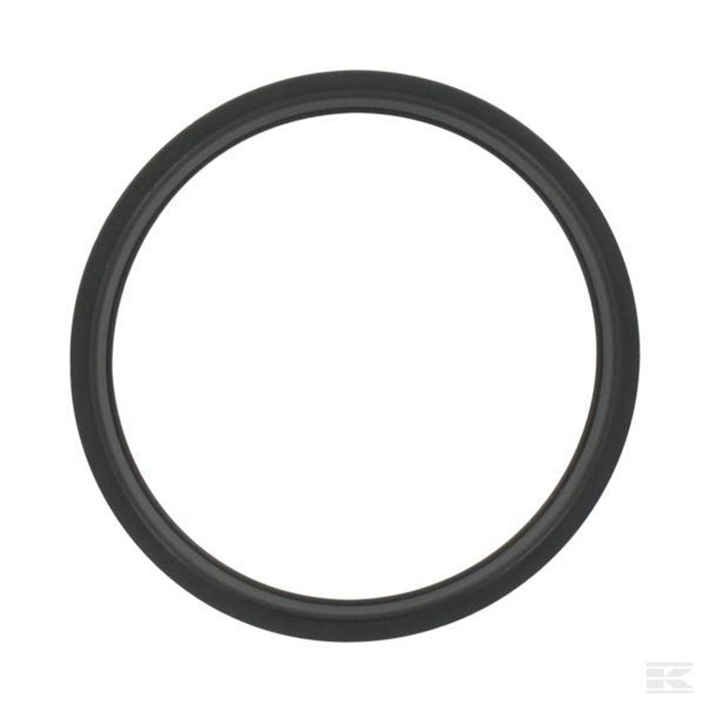 Кольцо уплотнительное для помпы SICCE Syncra Silent 2.0