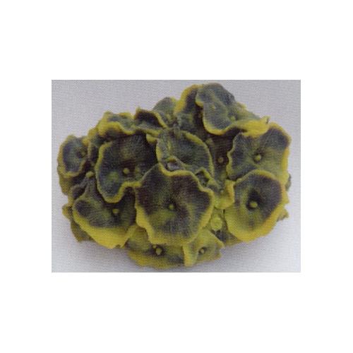 Коралл пластиковый желто-зелёный 14х12х7см