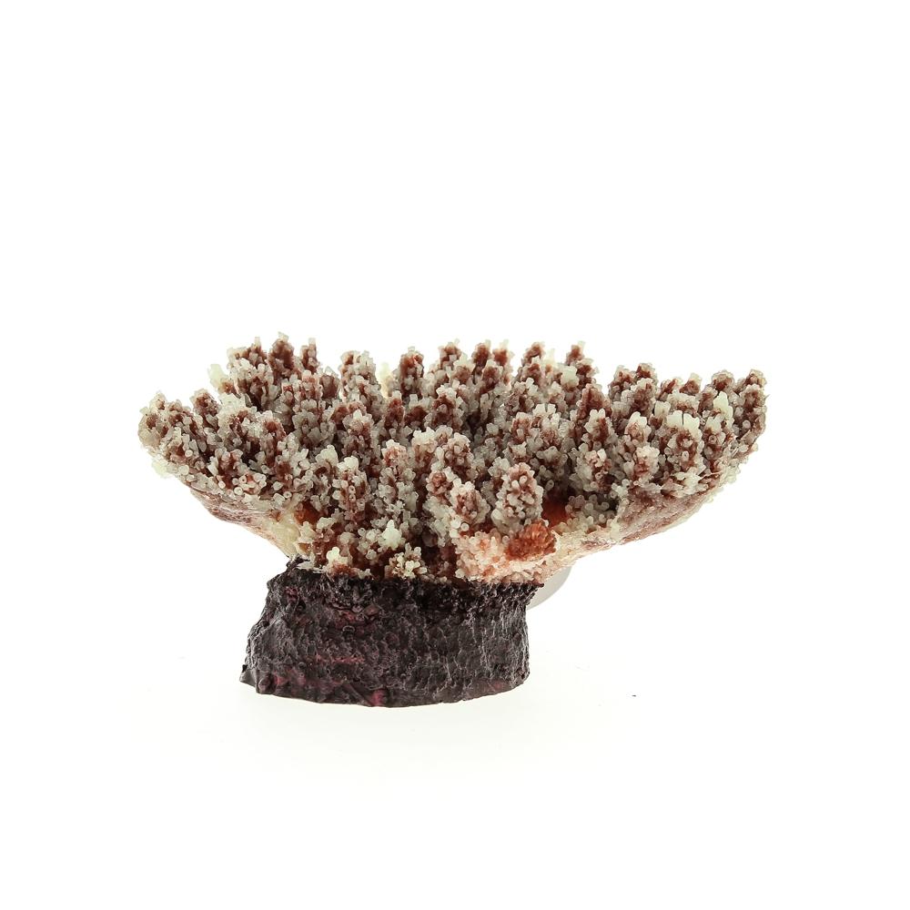 Коралл искусственный перламутровый 21*18*11