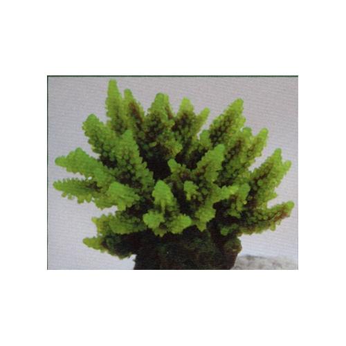 Коралл пластиковый зеленый 11,5x10x9см