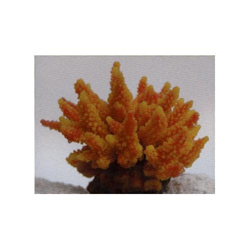 Коралл пластиковый желто-оранжевый 11,5x10x9см (SH095GY)