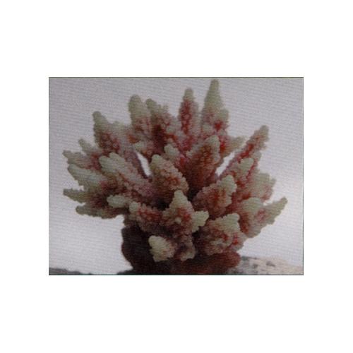 Коралл пластиковый перламутровый 11,5х10х9 см