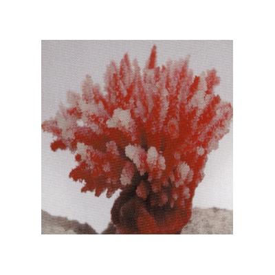 Коралл пластиковый перламутровый 10,5x8,5x8см