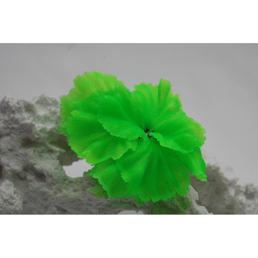 Коралл силиконовый зеленый 14х11х9см