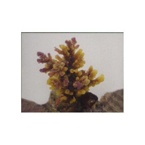 Коралл пластиковый желто-коричневый 8*7*10