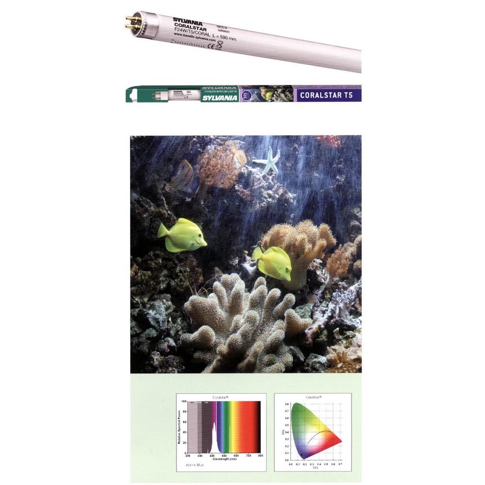 Лампа SYLVANIA T5 Coralstar 24Вт 54.9см, цоколь G5