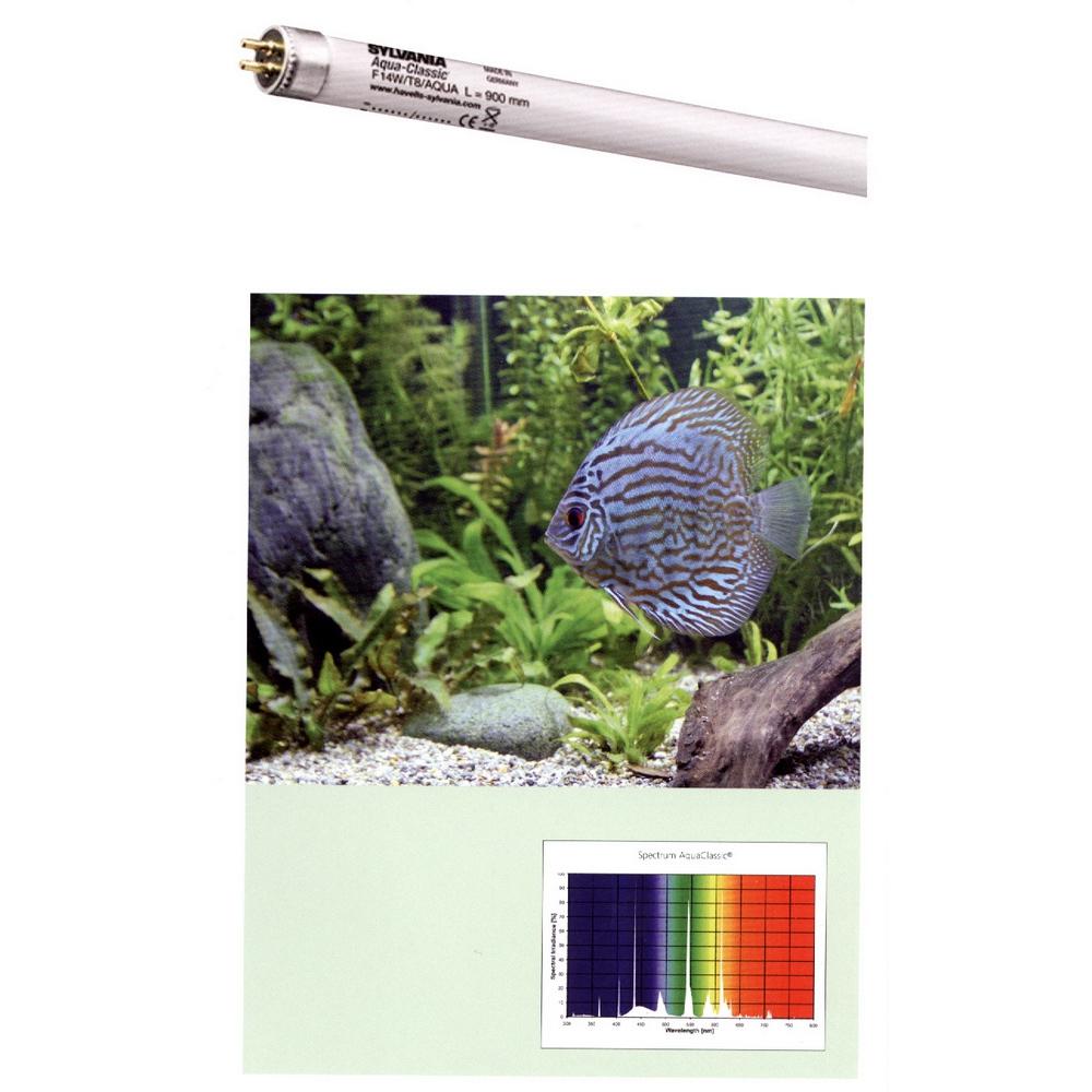 Лампа SYLVANIA T8 Aquaclassic 25Вт 74,2см, цоколь G13