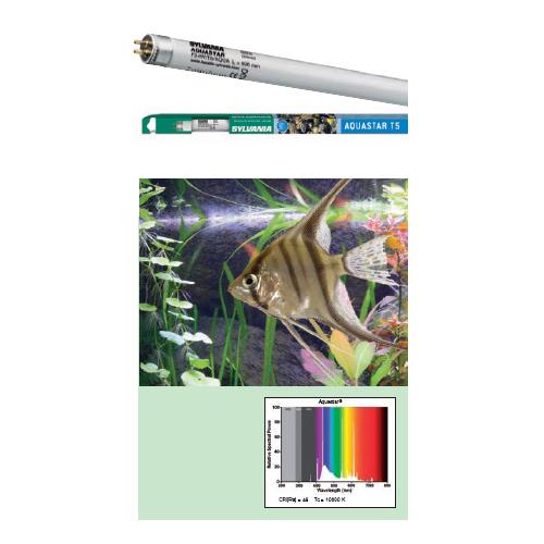 Лампа SYLVANIA T5 Aquastar 54Вт 114.9см, цоколь G5