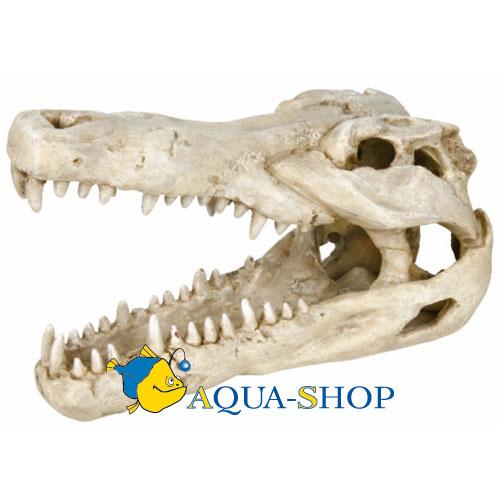 Грот TRIXIE Череп крокодила 14 см